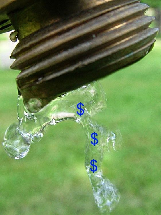 Positive Cash Flow Starts with a Drip and Ends with a Torrent of Dollars - It Makes Cents!